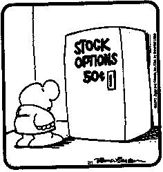 What is a stock options grant